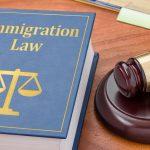 deportation defense cases